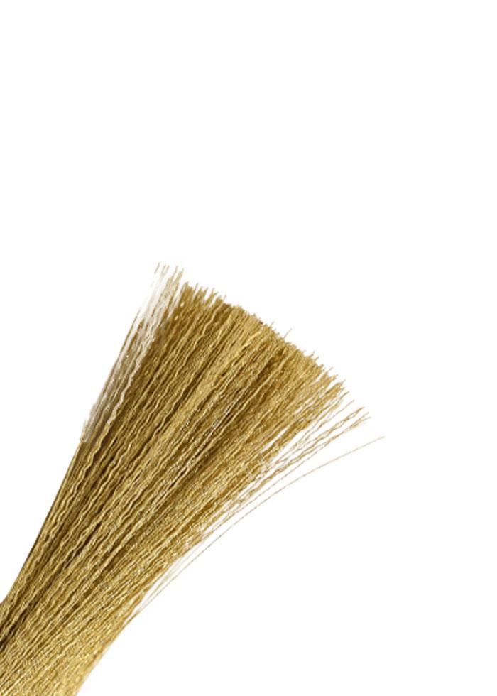 Brush-CYM6656